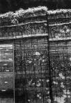 Wieland Payer, Schicht, 2007, charcoal on paper, 100 x 70 cm