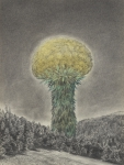 Wieland Payer, Pionier IV, 2010, charcoal and pastel on paper, 40 x 30 cm