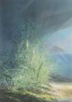 Payer, Wieland:  WALDRAND; 2019, Pastell, Aquarell und Kohle auf grundiertem MDF, 100 x 70 cm          Foto: Herbert Boswank